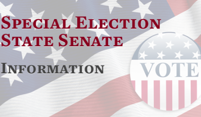 Special Election State Senate 41